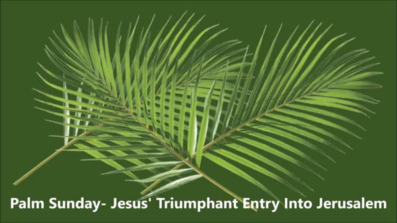 Palm Sunday A